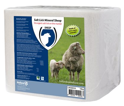 Liksteen 'mineral' sheep